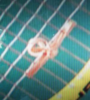 Adaptation of Andre Agassi rubber band string dampner